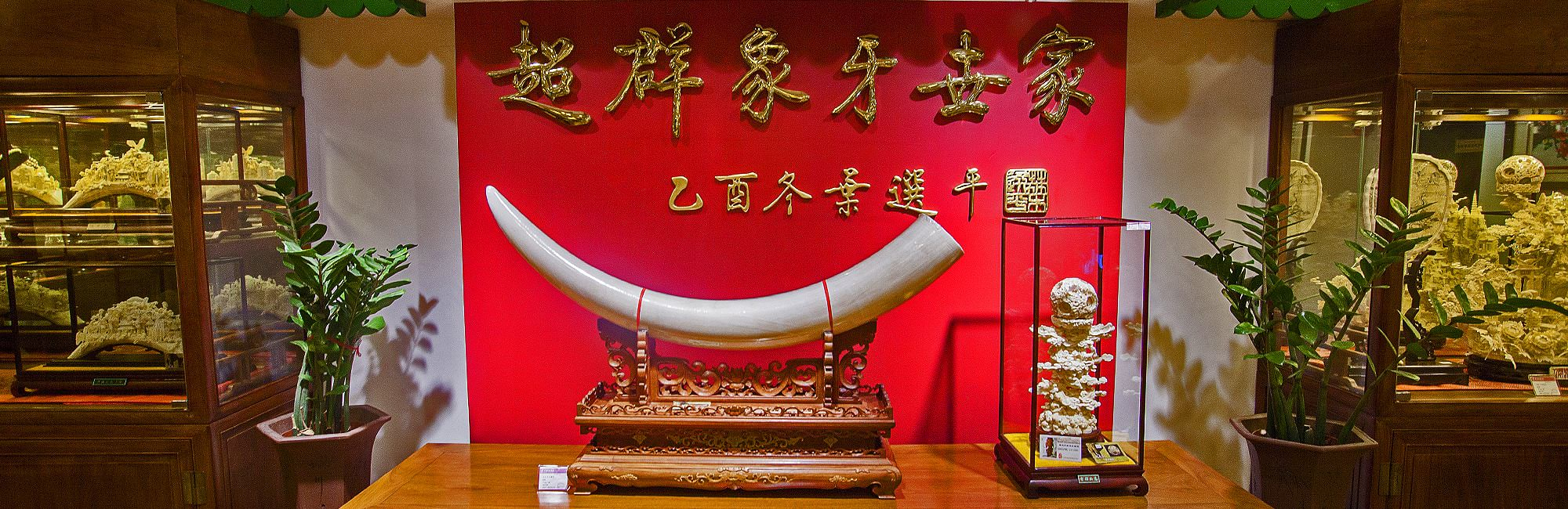ivory, report, ivory report, Save the Elephants, China, STE