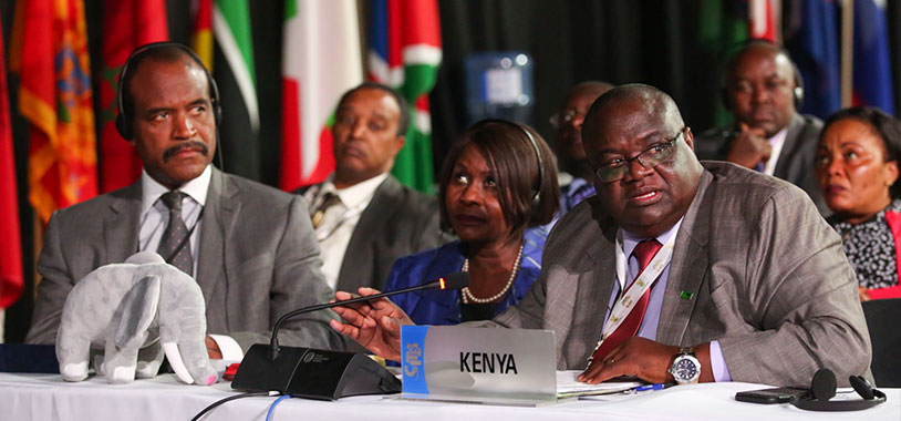 L-R KWS Director General Kitili Mbithi, Kenya Cabinet Secretary for Environment Prof. Judi Wakhungu, and KWS Deputy Director Species Conservation and Management, Patrick Omondi at the Conference. @IISD/ENB