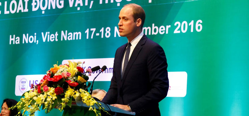 Prince William addresses the conference. @http://iwthanoi.vn/gallery/