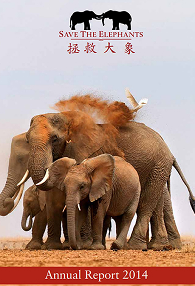 save the elephants, elephant, elephants are important, why elephants are important, STE, wildlife conservation, wildlife, elephant tusks, Samburu National Reserve, Kenya, annual reports, annual report, STE annual reports, STE annual report, report, funding, 2014