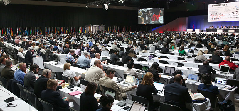 View of the plenary during Committee I @IISD/ENB